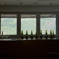 Vinprovning på Moselland HÖGUPPLÖST Foto: Gunilla Kinn Blom