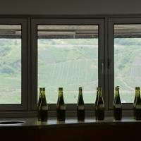 Vinprovning på Moselland LÅGUPPLÖST Foto: Gunilla Kinn Blom